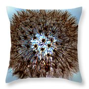 Fractal Seed Throw Pillow