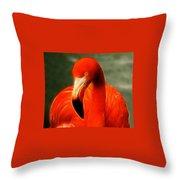 Fractalius Flamingo Throw Pillow