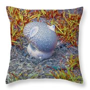 Fraggle Rock Throw Pillow