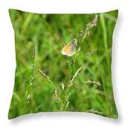 Fragile Beauty #01 Throw Pillow
