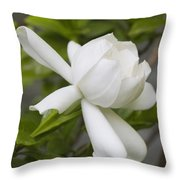 Fragrant White Gardenia Blossom Throw Pillow