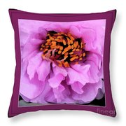 Framed In Purple - Abstract Floral Throw Pillow