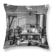 France: Food Laboratory Throw Pillow
