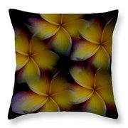 Frangipani Circle Of Color Throw Pillow