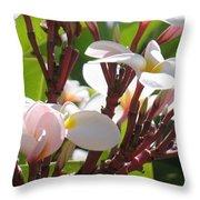Frangipanier - Plumeria - Ile De La Reunion - Reunion Island Throw Pillow