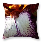 Freckles Throw Pillow