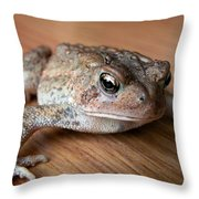 Freddy Throw Pillow