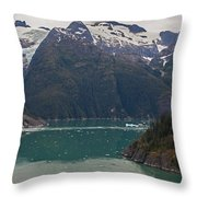 Frederick Sound Throw Pillow by Mike Reid