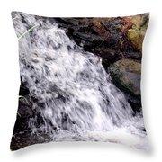 Free Fallen Throw Pillow