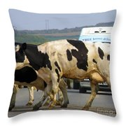 Free Home Delivery Throw Pillow