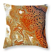 Free Nerve-endings, Epidermis Throw Pillow