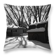 Freedom From Winter Throw Pillow