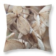 Freeze Dried Throw Pillow