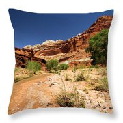 Fremont River Throw Pillow