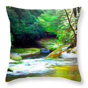 French Broad River Filtered Throw Pillow