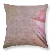 French Tours Throw Pillow