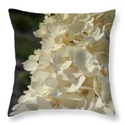 French Vanilla Hydrangea Throw Pillow