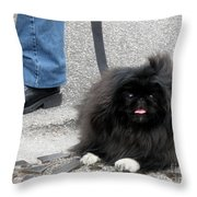 Frenchman And His Dog Throw Pillow