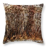 Frequently Passing  Throw Pillow