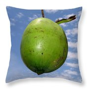 Fresh Coconut Throw Pillow