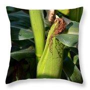 Fresh Corn On The Cob Throw Pillow