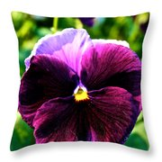 Fresh Face Pansy Throw Pillow