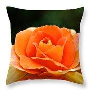 Fresh Peach Petals Throw Pillow