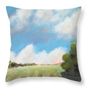 Freshly Cut Hay Field Throw Pillow