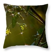 Freshly Showered Blossoms Throw Pillow