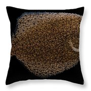 Freshwater Flounder Throw Pillow