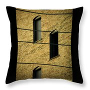 Bass Guitar Frets Throw Pillow