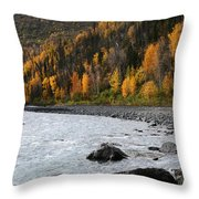 Friday Creek Throw Pillow