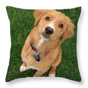 Friendly Dog Throw Pillow