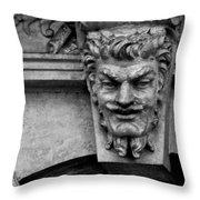 Friendly Face Throw Pillow
