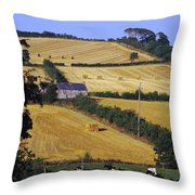Friesian Cattle Throw Pillow