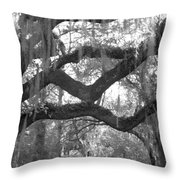 Fringe Throw Pillow