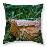 Fringed In Frost Throw Pillow
