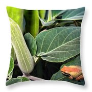 Frog And Moonflower Throw Pillow