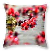 Frog At A Cape Cod Cranberry Bog Throw Pillow