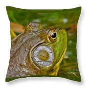 Frog Eye Throw Pillow