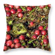 Frog Peaks Up Through Cranberries In Bog Throw Pillow