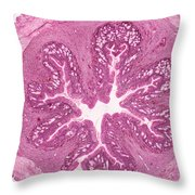 Frog Stomach Lm Throw Pillow