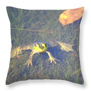 Froggie Sitting In The Water Throw Pillow