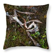 Frogs After The Fiesta Throw Pillow