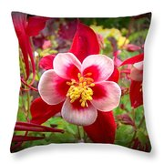 From Pink To Red Throw Pillow