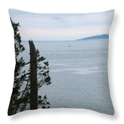 From The Bluff Throw Pillow