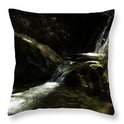 From The Bowels Of The Earth Throw Pillow