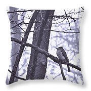 Fronts The North Wind In Waistcoat Gray Throw Pillow