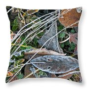Frost Composition Throw Pillow