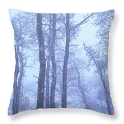 Frost Covered Trees In Fog, Alaska Throw Pillow